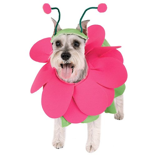 Bloomin' Snout Pet Costume - Small