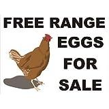 Smarts-Art Free Range Eggs For Sale Sign Plate Plaque 3Mm Rigid 200Mm X 200Mm