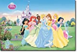 Disney Princess Collection Movie Poster Print - 22x34 Best Seller Poster Print, 34x22