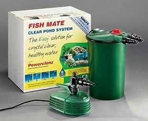 how to make fish mate