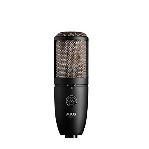 AKG P420.