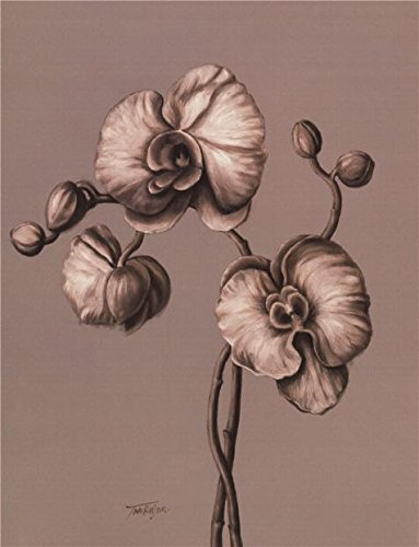 'Orchids' Oil Painting, 8x10 Inch / 20x27 Cm ,printed On Perfect Effect Canvas ,this Best Price Art Decorative Canvas Prints Is Perfectly Suitalbe For Kitchen Artwork And Home Artwork And Gifts