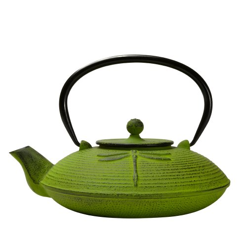 Primula Cast Iron Teapot - Durable Cast Iron with a Fully Enameled Interior - Beautiful Dragonfly Design - 26 oz. - Green (Tea Infuser Pot Cast Iron compare prices)