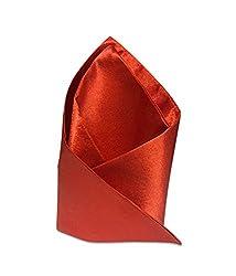 Vibhavari Men's Red Pocket Square