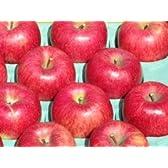 信州のりんご農園直送 サンふじ ご贈答用 サイズM 10kg(36~40個)