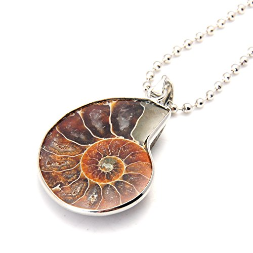 joya-gift-charm-handmade-natural-conch-fossil-ammonite-by-silver-wrapped-pendant-necklace-1-pce