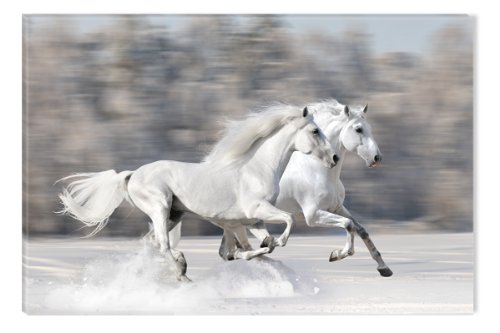 startonight-canvas-wall-art-horses-running-fast-horses-usa-design-for-home-decor-dual-view-surprise-