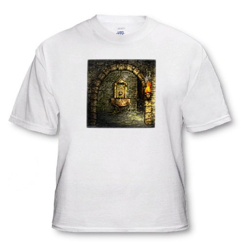 A medieval room features an enchanted fountain as a torch burns nearby - Adult T-Shirt Large