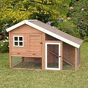 Build Your Own Backyard Chicken Coop