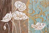 White Poppy and Queen Annes Lace I by St. Jean, Nora- Fine Art Print on CANVAS : 65 x 44 Inches
