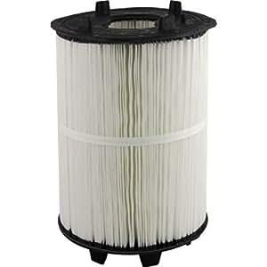 Amazon Com Pentair 27002 0125s Filter Module Replacement