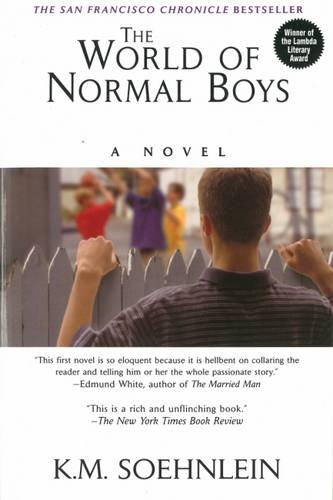 The World Of Normal Boys