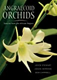 Angraecoid Orchids: Species from the African Region
