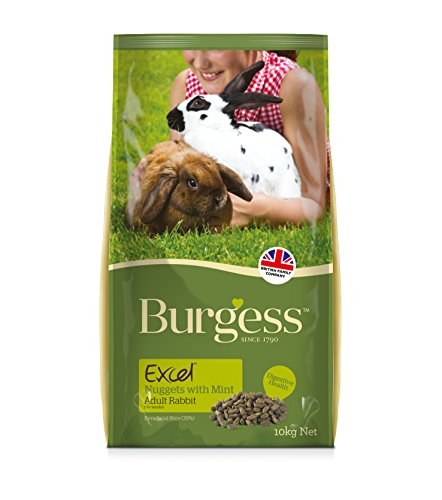 burgess-excel-nuggets-with-mint-adult-rabbit-food-10-kg