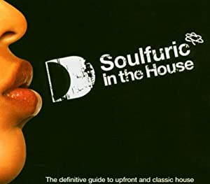 Soulfuric - In The House