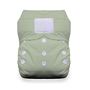 Thirsties Duo All in One Cloth Diaper with Hook and Loop, Celery, Size 1