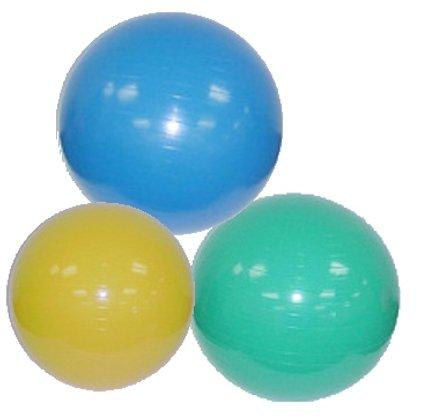 Stability Ball Squat