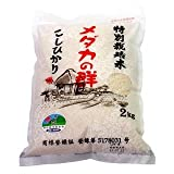 メダカの群 【鳥取県特別栽培米】