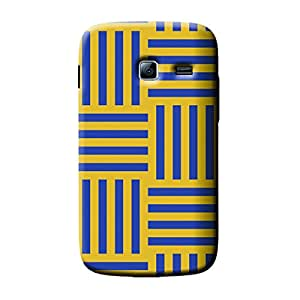 Garmor African Pattern Design Plastic Backcover for Samsung Galaxy Y Duos S6102- (African 4)