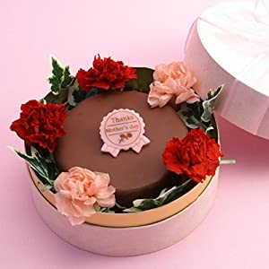 母の日ザッハトルテガーデン【2013母の日スイーツギフト・プレゼント】カーネーション花(ブリザードフラワー)つき