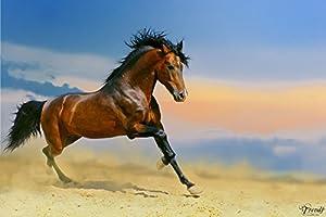 Pferde 0004, Moderne Fototapete Mural Kunstdrucke Aufkleber Dekor Wandsticker Bilder, 245 x 360cm.   Kundenbewertung und weitere Informationen