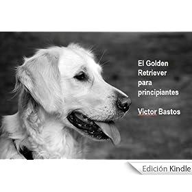 El Golden Retriever para principiantes