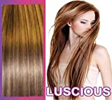 24 inch Luxury Hair Weft and Clips. Remy Human Hair Weft Brown/Blonde ... Black Friday
