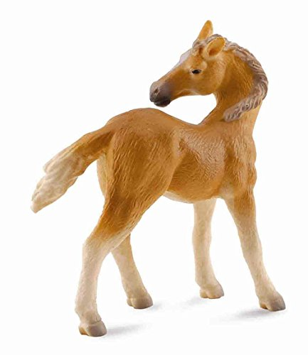 CollectA Haflinger Foal (Looking Back)