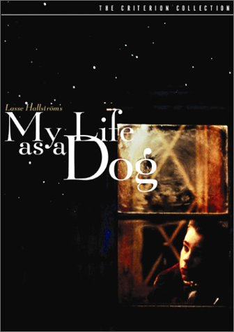 My Life as a Dog (The Criterion Collection) (1987)