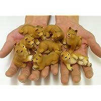 柴犬の置物 8匹セット [QA510]