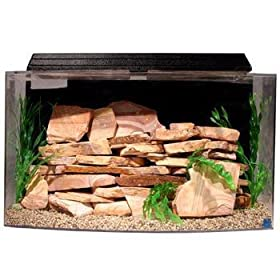 Best bow front aquariums in 2018 reviews fish tank advisor for Fish tank heater petco