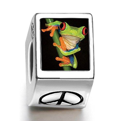 rarelove-a-frog-animal-photo-peace-symbol-european-charm-bead
