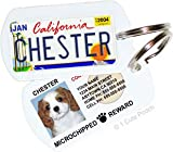 Custom Pet ID Tag PL8S 4 PETS(®) License Plate Tag Kit