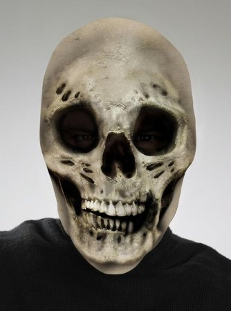Costumes For All Occasions Dg10535 Skull Scary Mask