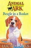 Beagle in the Basket (Animal Ark)
