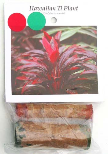 Hawaiian Ti Plant Log Cuttings 10 Red 10 Green (Pack of 10) Grow Hawaii (For Ti Plant compare prices)