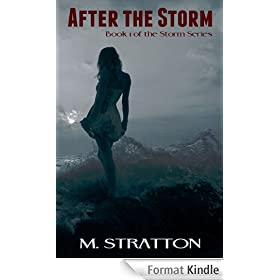 After the Storm (The Storm Series Book 1) (English Edition)