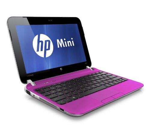 Hewlett Packard 210-3060CA 10.1-Inch NetBook LCD (Sweet Purple)