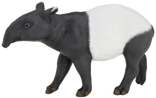 Tapir - 1