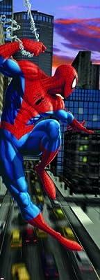 Komar Spider Man NYC