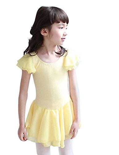 DD-CM Little Girls' Ballet Dance Costume Short Sleeve Tutu Dress