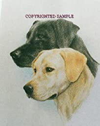 Labrador Retriever - Portrait by Cindy Farmer, Pair