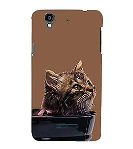 Cute Cat Design 3D Hard Polycarbonate Designer Back Case Cover for YU Yureka :: YU Yureka AO5510