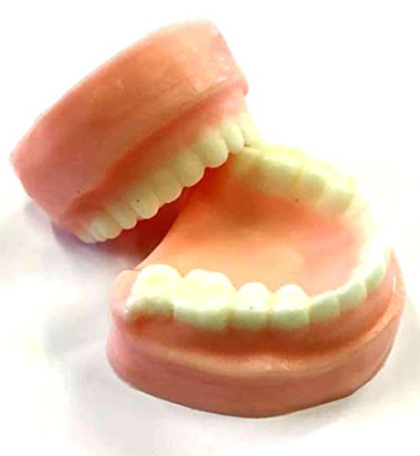 denture-soap-set-false-teeth-gag-gift-tooth-soap-prank-soap-you-choose-scent-soap-dentures-funny-soa