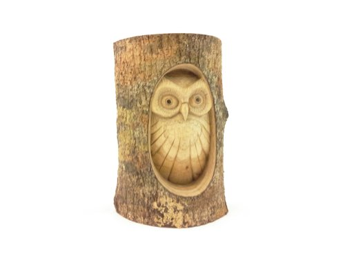 Timber-Treasures Hand Carved Owl in Log - Large