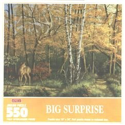 Big Surprise 550 pc. Jigsaw Puzzle by Hoyle