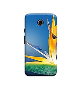 Ebby Premium Printed Back Case Cover With Full protection For Motorola Moto X2 (Designer Case)