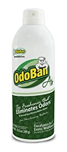 OdoBan 979061-10A12 Ten Ounce Air Freshener Spray