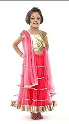 Awesome Fab Pink Colour Soft Net Semi-stitched Laced Lehenga Choli