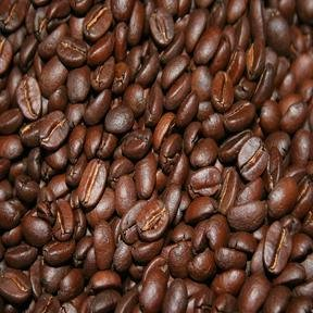 Fresh Bolivian Organic Coffee 1 Lb Med Roast Whole Bean